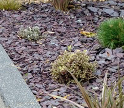 Decorative Slate & Path Gravel