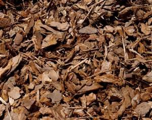 Decorative woodland bark (50Ltr)